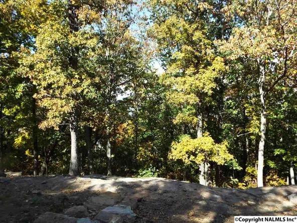 15 S. County Rd. 89, Mentone, AL 35984 Photo 21