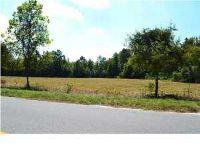 Home for sale: 0 Mauss Hill Rd., Adams Run, SC 29449