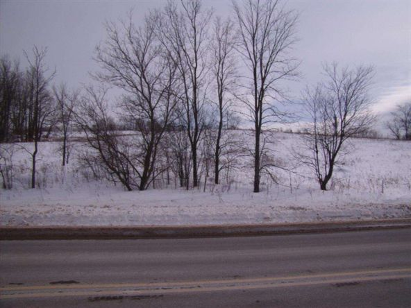 Maple Valley Subdivision, Wittenberg, WI 54499 Photo 3