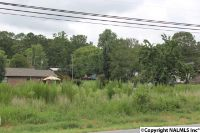 Home for sale: Gault Avenue S., Fort Payne, AL 35967