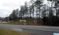 Home for sale: 495 Hwy. 211, Calera, AL 35040