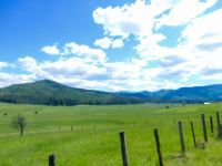 Home for sale: Nna Tyson Creek, Santa, ID 83866