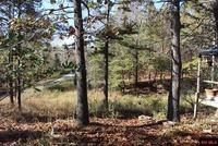 Home for sale: 162 Knollwood Dr., Yellville, AR 72687