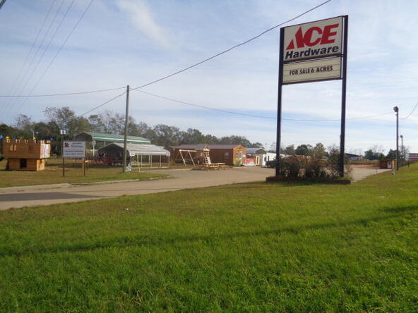 390 Glen Lawrence/ Hwy. 84, Cowarts, AL 36321 Photo 1