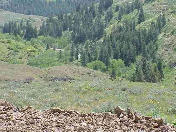 Lot 2 Middle Fork Rd., Council, ID 83612 Photo 1