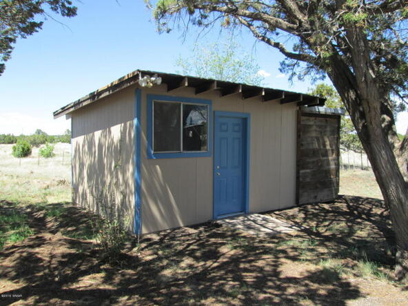 1593 Cr 3140, Vernon, AZ 85940 Photo 22
