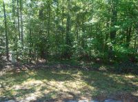Home for sale: 209 Chausette Trail, McCormick, SC 29835