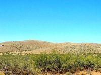 Home for sale: 40 Ac Morgan Ranch, Elfrida, AZ 85610