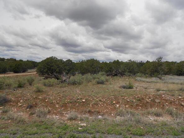 4650 W. Dillon Wash Rd., Prescott, AZ 86305 Photo 4