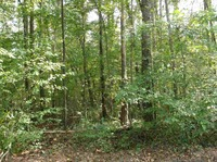 Home for sale: Tr 1c Sand Bar Rd. Tr 1c Sand Bar Road, Anderson, SC 29626