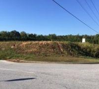 Home for sale: 0 Buchanan Bypass, Buchanan, GA 30113