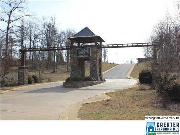 112 Overlook Ridge, Lincoln, AL 35096 Photo 6