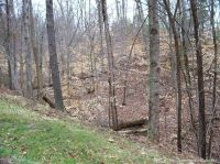 Home for sale: 0 Southern Hills Lot#66, 67 Dr., Borden, IN 47106