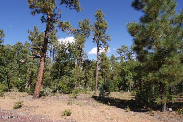 2850 W. Richardson Ln., Lakeside, AZ 85929 Photo 10