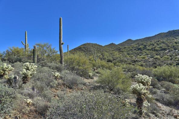45 N. Cottonwood Canyon Rd., Cave Creek, AZ 85331 Photo 9