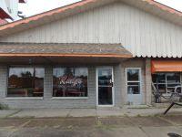 Home for sale: 185 Shawnee Avenue, Shawneetown, IL 62984