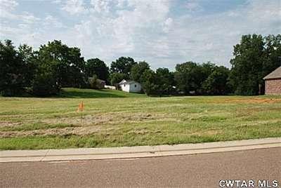 Lot 2 Hill St., Henderson, TN 38340 Photo 3