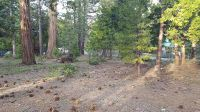 Home for sale: 675 Tavern Dr., Tahoe City, CA 96145
