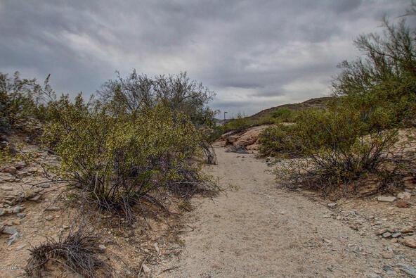 14228 S. Canyon Dr., Phoenix, AZ 85048 Photo 11