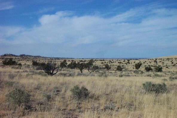 6218 S. Prairie Grass Ln., Williams, AZ 86046 Photo 11