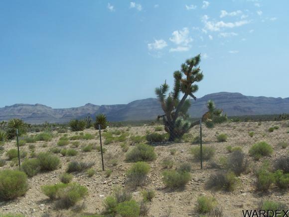 27212 N. Driftwood Dr., Meadview, AZ 86444 Photo 5