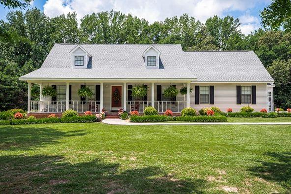 3781 Hwy. 59, Spruce Pine, AL 35585 Photo 1