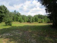 Home for sale: 0 Passieu Cir., Folkston, GA 31537
