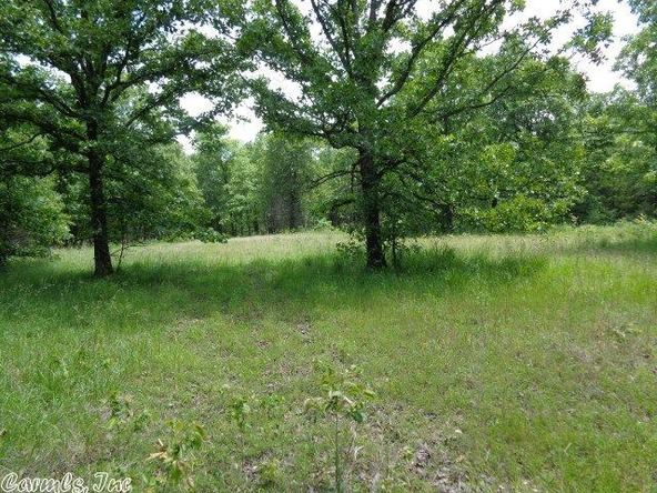 2606 Eagle Nest Rd., Ash Flat, AR 72513 Photo 33