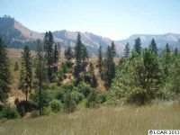 Home for sale: Lot 23 Pardee-Tramway, Kamiah, ID 83536