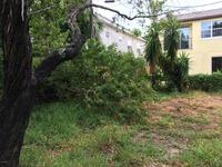 Home for sale: 333 Madison Avenue, Cape Canaveral, FL 32920