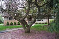 Home for sale: 1604 River Terrace, East Lansing, MI 48823