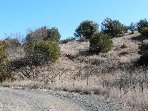 5.01 Ac W. Creek Rd., Portal, AZ 85632 Photo 4