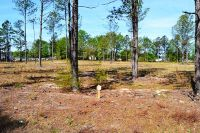 Home for sale: Lot 5b N. Trade St., Cheraw, SC 29520