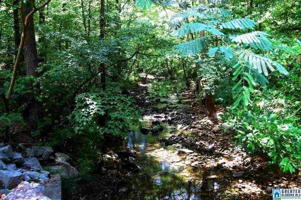 160 Drennen Park Cir., Hayden, AL 35079 Photo 61