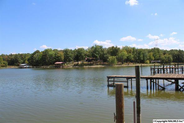 31 County Rd. 131, Cedar Bluff, AL 35959 Photo 28