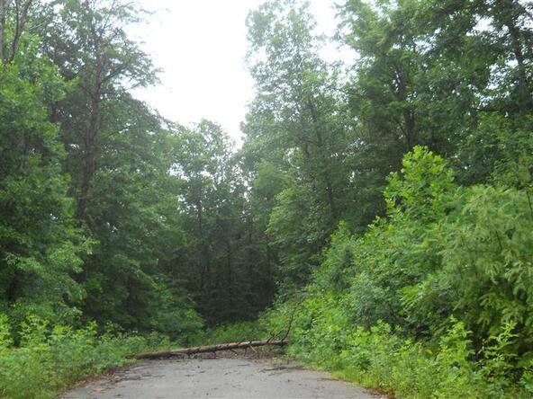 77 Close Lake Dr., Nancy, KY 42544 Photo 3