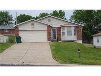 Home for sale: 9119 Cozens Avenue, Saint Louis, MO 63136