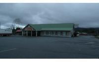 Home for sale: 223 Welborn St., Blairsville, GA 30512