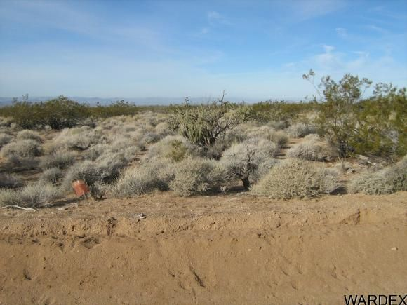 811 Kit Carson, Yucca, AZ 86438 Photo 11