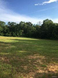 Home for sale: 0000 Reed Creek Ln., Ralph, AL 35480