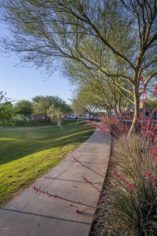 11439 W. St. John Rd., Surprise, AZ 85378 Photo 64