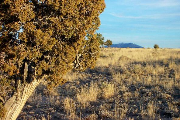 6218 S. Prairie Grass Ln., Williams, AZ 86046 Photo 4