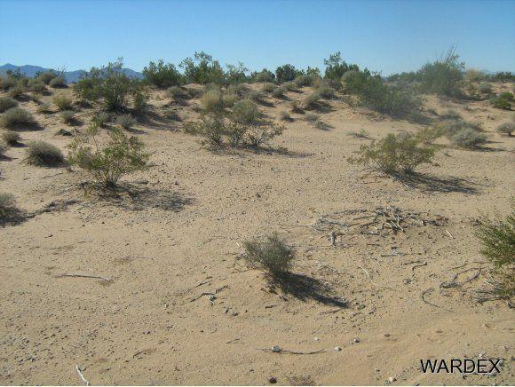 16235 S. Shep Ln. S, Yucca, AZ 86438 Photo 7