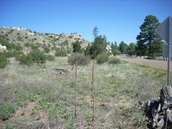 2952 Buckskin Canyon Rd., Heber, AZ 85928 Photo 5