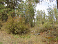Home for sale: Lot #17 Breezy Top Ln., Kettle Falls, WA 99141