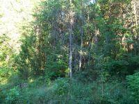 Home for sale: 172 Bat Creek Shores Ln., Vonore, TN 37885