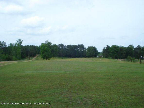 1024 Lost Creek Rd., Carbon Hill, AL 35549 Photo 8