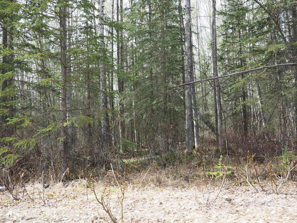 10274 S. Ridge Rd., Wasilla, AK 99654 Photo 10