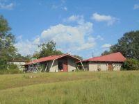 Home for sale: 3153 Hwy. 231 South, Brundidge, AL 36010