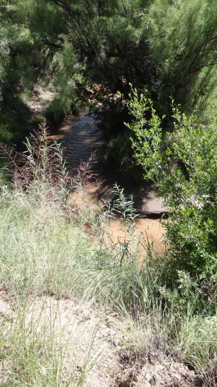 109 River Springs Ranch Unit 3 --, Saint Johns, AZ 85936 Photo 43